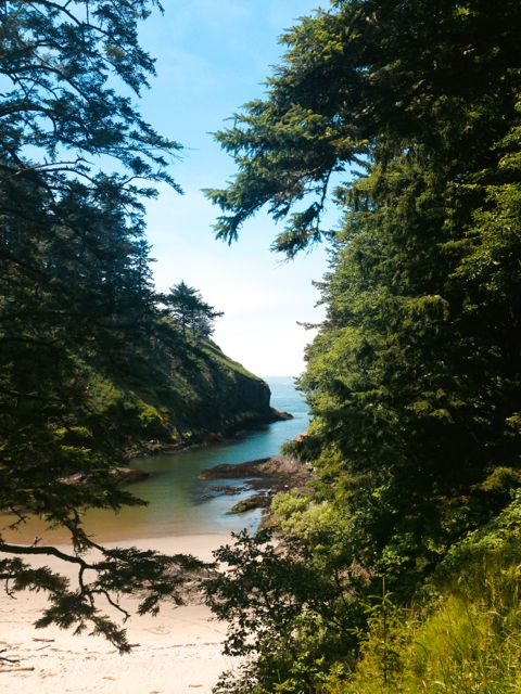 Cove on the way to Cape Disappointment