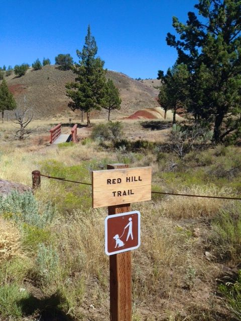 Trails at the Painted Hills
