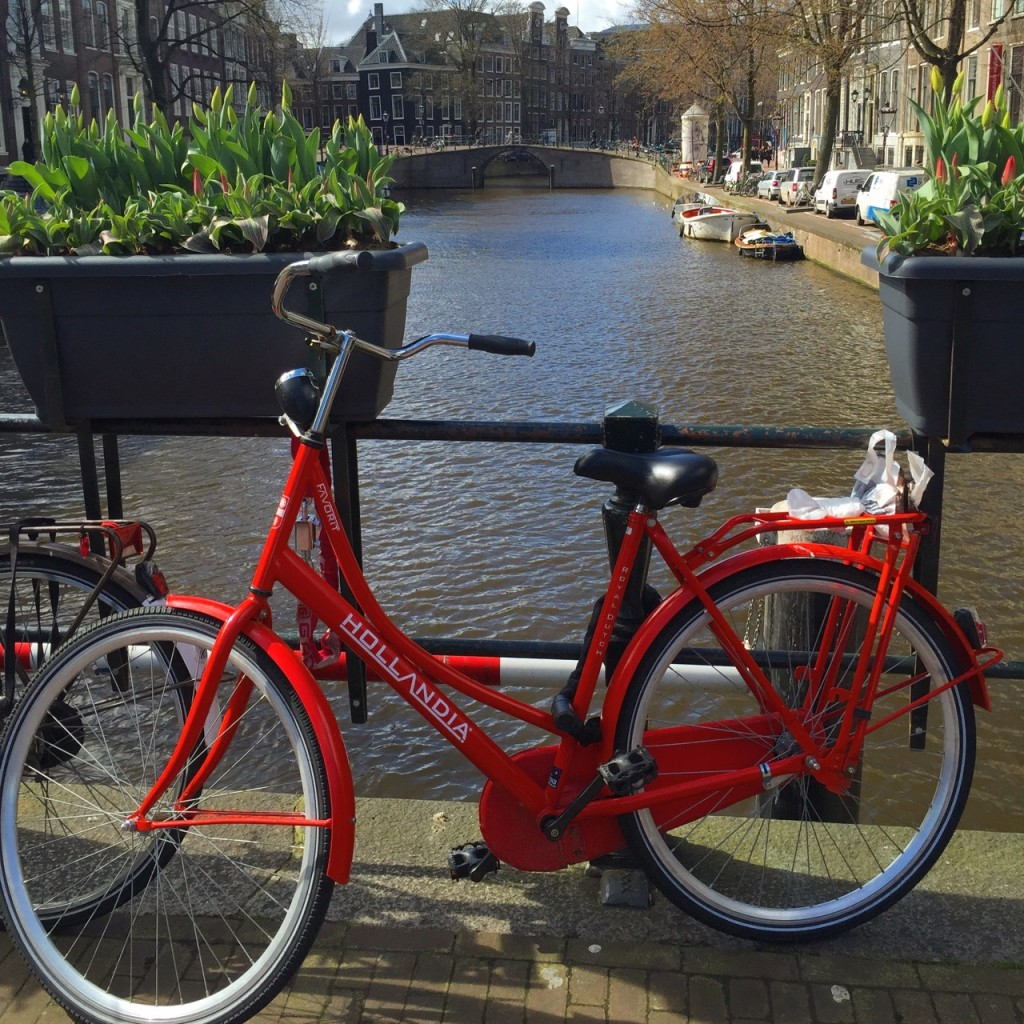 The bikes of Amsterdam are as impressive as the canals.
